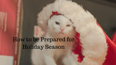 how-to-be-prepared-for-holiday-season